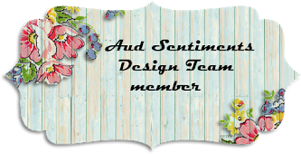 Aud Sentiments Challenge Blog